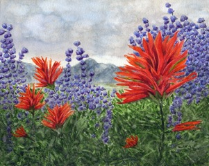 Indian Paintbrush by Helen Rietz