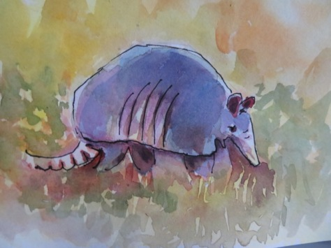 Wildlife watercolor painting