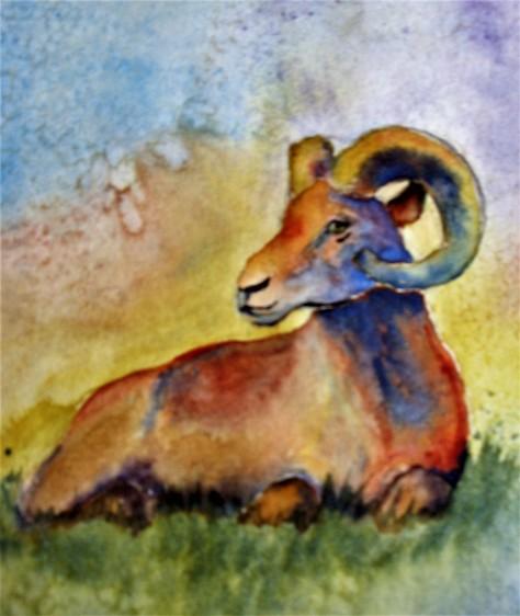 bighornweaver